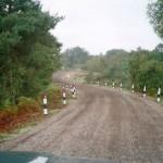 Track Reinstatement