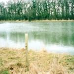 Pond and Lake Excavation